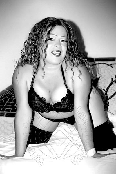 Daniela Hot  PAVIA 3663663571